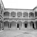 820313_Palacio_Infantado