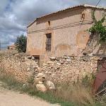 770521_Concha_en_el_Camino_Real