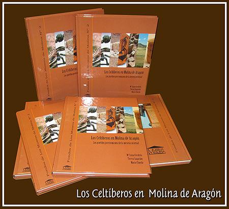 Este es el libro que explica de forma total y contundente todo cuanto conviene saber sobre la Celtiberia histórica.