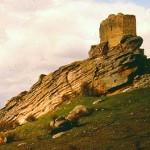 750712_Zafra-castillo