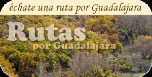 Rutas por Guadalajara